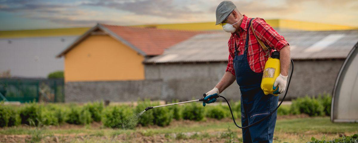Najpopularniejsze pestcydy, czy na pewno należy się ich bać?