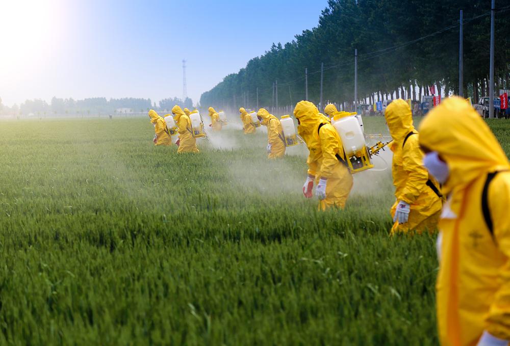 Owoce i warzywa przesiąknięte pestycydami