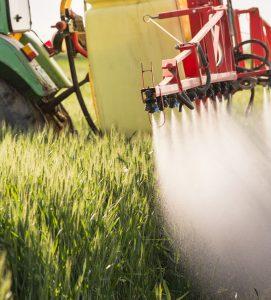 Pestycydy w żywności