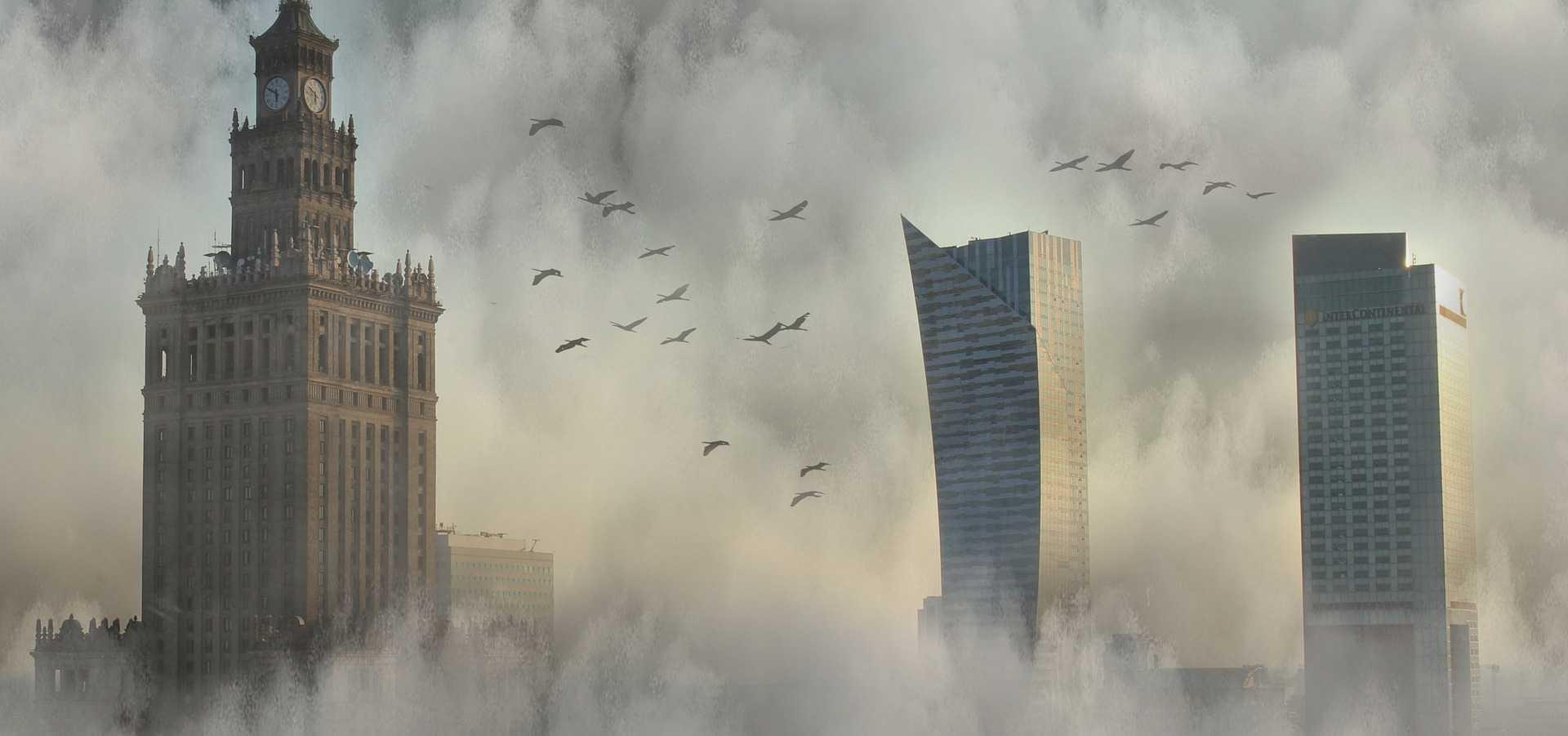 Czy rośliny oczyszczające powietrze wystarczą?